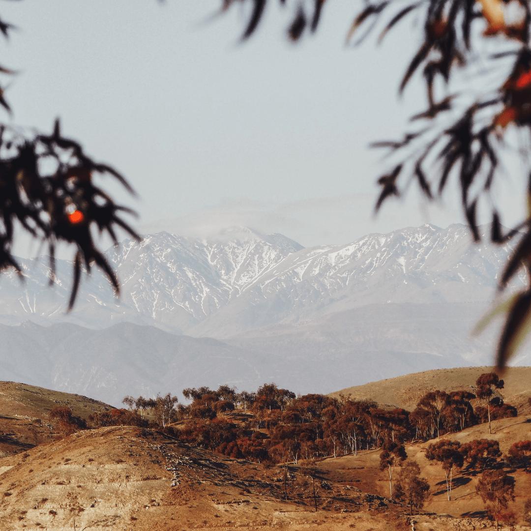 Inspiration édition montagne Trek Des Gazelles
